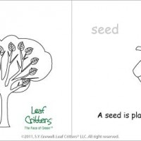 "Activity: ""A Living Tree"" put-together book"