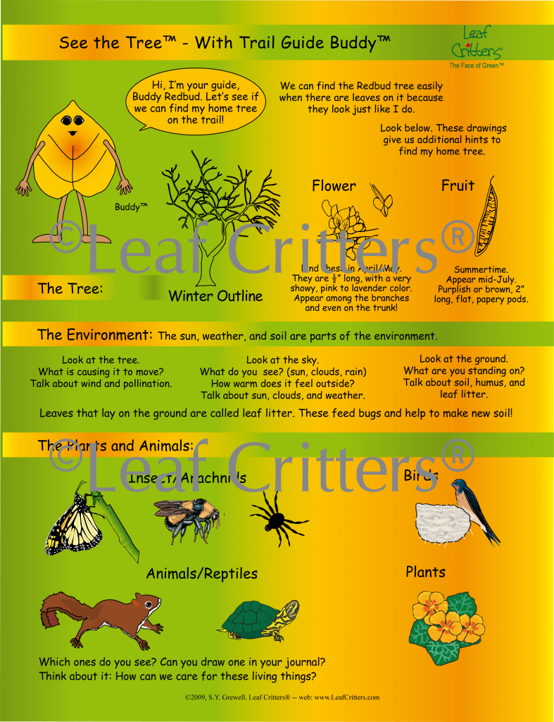 SEE THE TREE™ – Poly Guides - Leaf Critters Leaf Critters